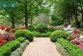 حدائق منزلية صغيرة