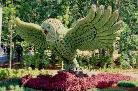 ديكور حدائق منزلية (3)