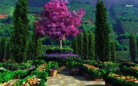 ديكور حدائق