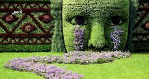 ممرات حدائق