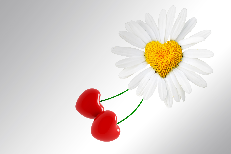 احلي صور قلوب وحب ورومانسية (4)