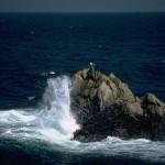 صور مناظر طبيعية 31