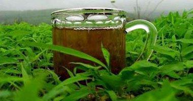 شاي اخضر ورق