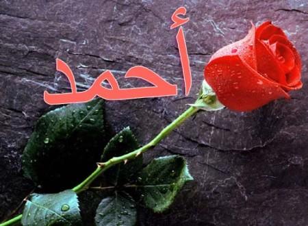 أحمد بالصور خلفيات ورمزيات (5)