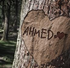 احمد (3)