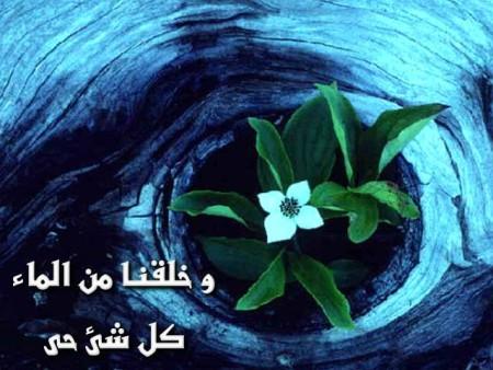 البوم صور دينيه واسلامية (10)