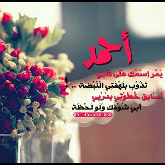 صور أحمد (3)