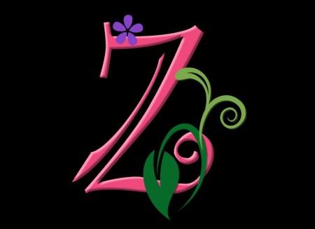 صور حرف زد بالانجليزي Z (1)
