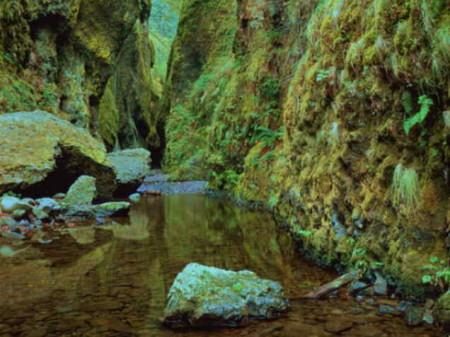 صور مناظر الطبيعة الجميلة (5)