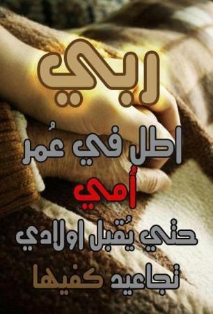 عيد الأم2015 (9)