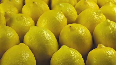 الليمون (1)