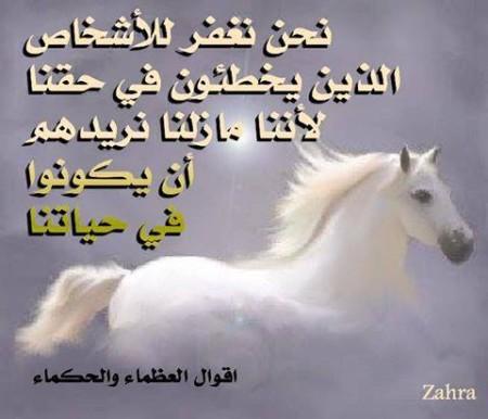 امثال عن الحياه (2)