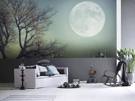 تصميمات منازل بديكورات عصرية من الداخل 2015 (1)