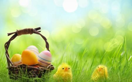 تلوين بيض شم النسيم (4)