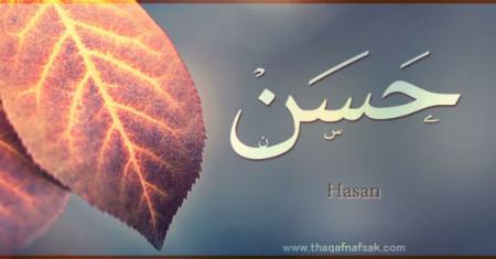 خلفيات ورمزيات بأسم حسن (2)
