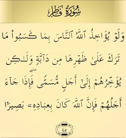 صور ايات قرأنيه سورة فاطر (2)