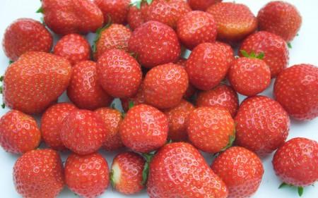 صور فاكهة الفراولة (5)