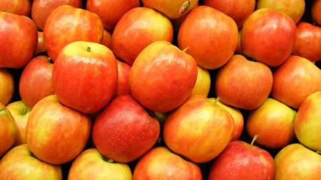 تفاح بالصور عالية الجودة HD (1)