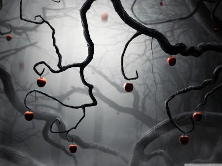 خلفيات تفاح (1)