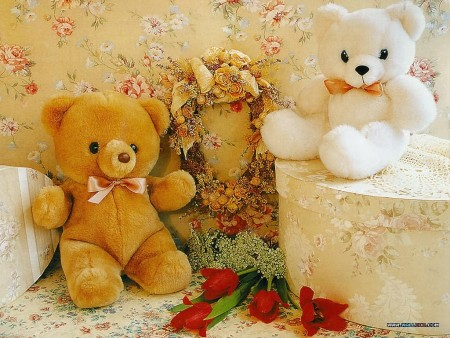 دباديب حب وغرام وعشق (2)