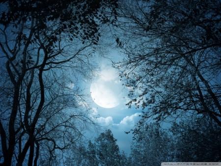 صور خسوف القمر (3)