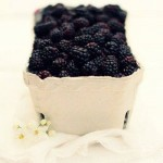 صور فاكهة التوت (2)