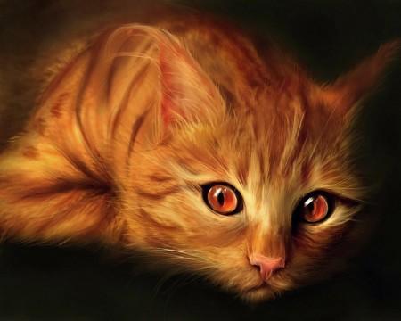 صور قطط ملونة (1)
