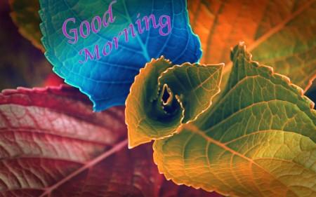 صور للاستيقاظ والصباح الباكر  (1)