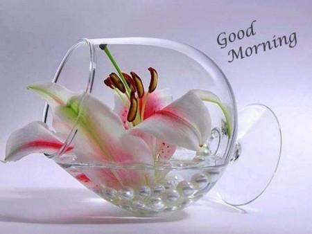 صور وقت الصباح (1)