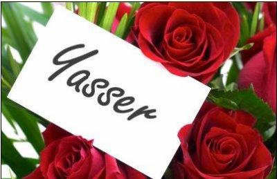 yasser (3)