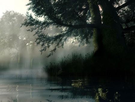 صور مطر (1)