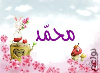 صور مكتوب عليها i love mohamed (3)