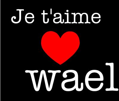 Wael (2)