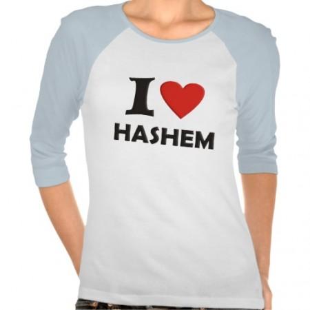 i_love_hashem_tees-re468f4602dbc4f608d856d4e5927b613_vjfy9_512