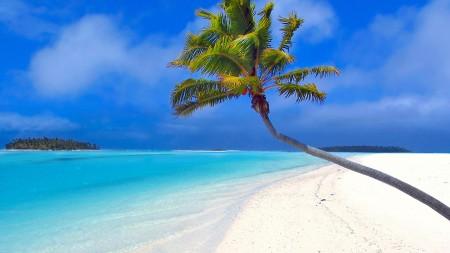 اجمل الشواطئ (1)