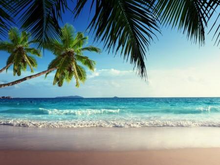 احلى شواطئ العالم (4)