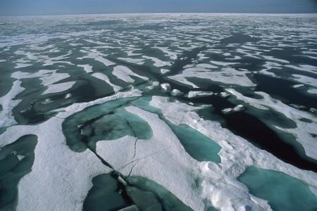 احلي بحر (1)