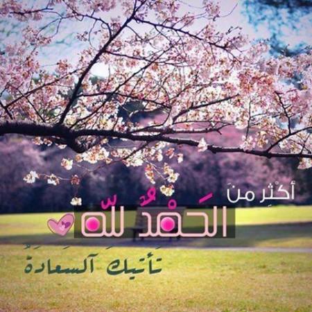 خلفيات اسلاميات (2)