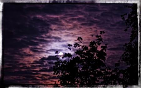 خلفيات سماء (1)