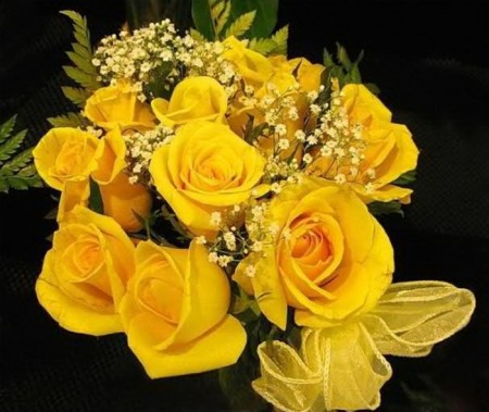 زهور باللون الاصفر (2)