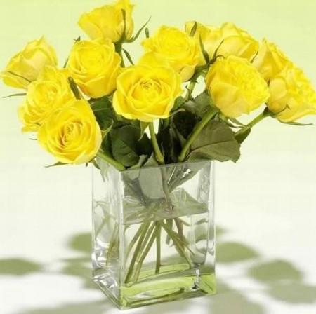 زهور باللون الاصفر (7)