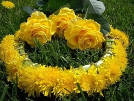 زهور باللون الاصفر (9)