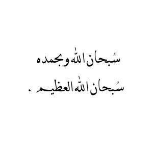 سبحان الله وبحمده بالصور (2)