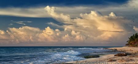 صورة بحر (2)