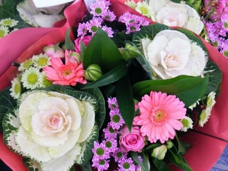 صور زهور جميلة (6)