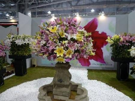 صور زهور (4)