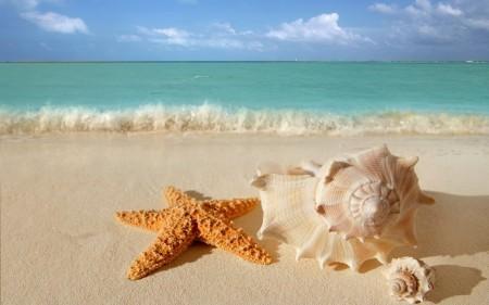 صور شواطئ جميله (3)