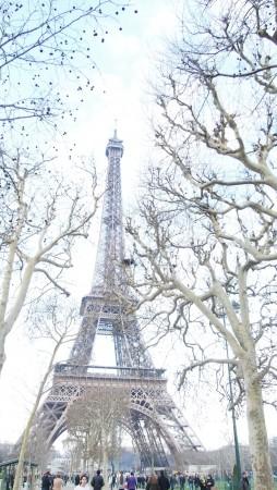 برج ايفل 3
