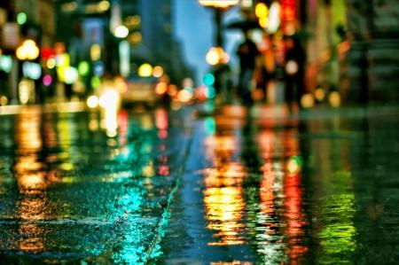خلفيات مطر الشتاء (3)