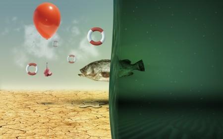 سمك زينة بالصور (4)